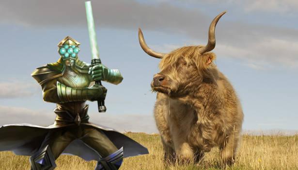 Yi und Cow